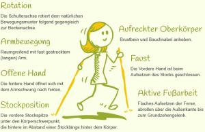 zeichnung-nordic-walking grundtechnik deutsch
